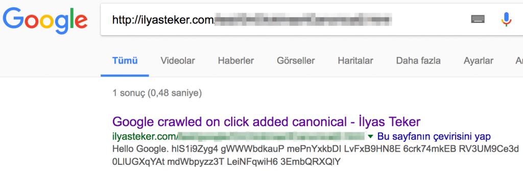 canonical google js seo